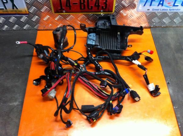 Schema Elettrico Harley Davidson 883 : Harley impianto elettrico completo per modelli